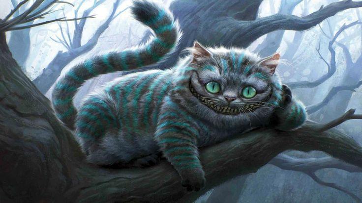 Best 3D Cat HD Wallpaper For Free