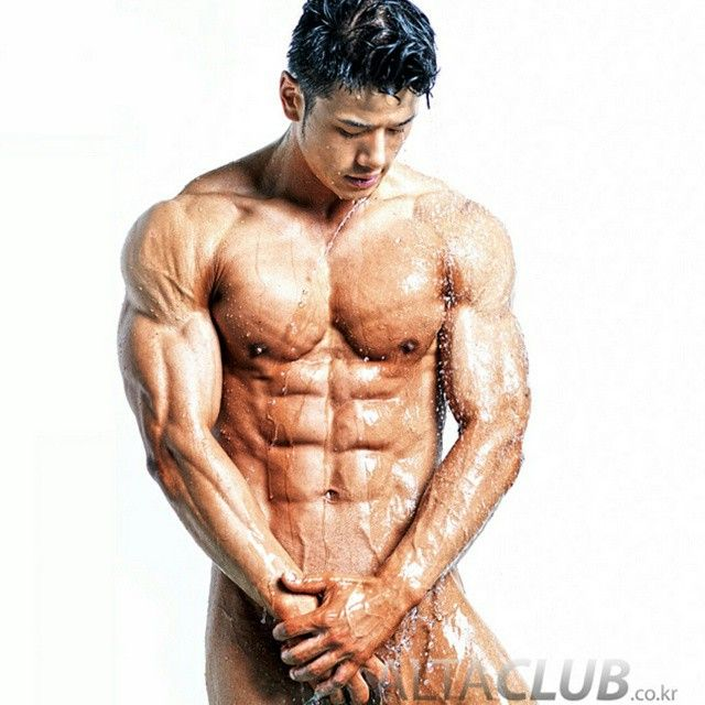 Korean Muscle Archive