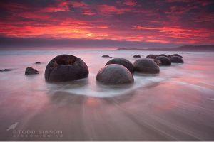 Moeraki Boulders, New Zealand  most beautiful places in the world #HipmunkBL