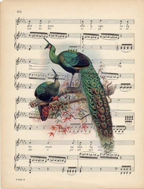88 best Notes Pictures Vintage images on Pinterest Sheet - tür für küchenschrank