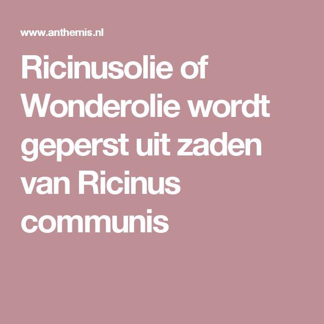 Ricinusolie of Wonderolie wordt geperst uit zaden van Ricinus communis