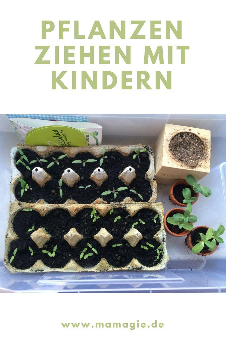 7 ultimative Tipps zum Gärtnern mit Kindern