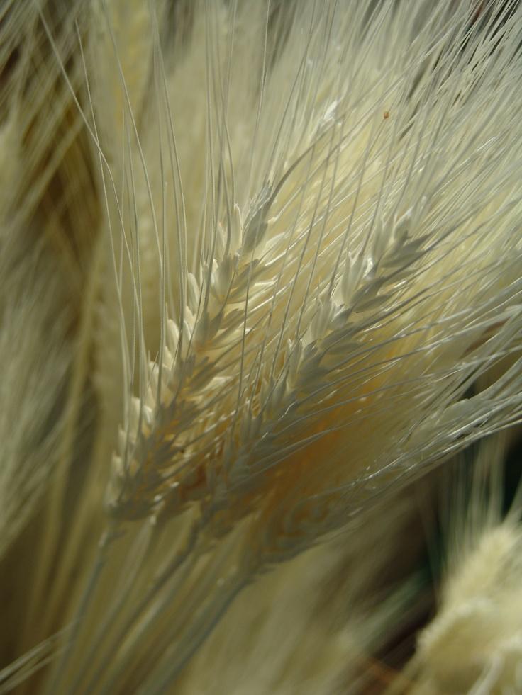 Están hechos de sémola y harina de trigo.