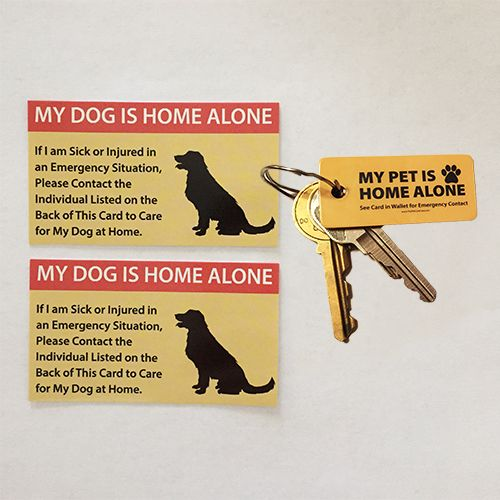 This Emergency Pet Keyring Tag is the perfect addition to our Pet Care Card and will help alert emergency personnel to look at your Emergency Pet Care Card in y