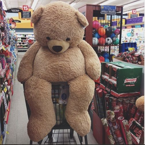 life size teddy bears for valentines day