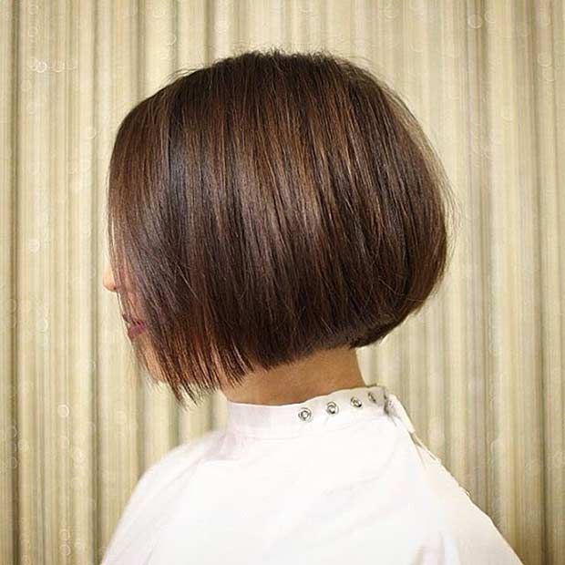 hair styles 50 2268 best images about bob haircuts on 1847