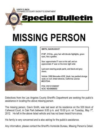 82 best Missing Persons images on Pinterest Angel, Bebe and Cats - missing person template