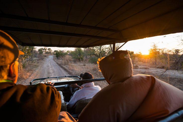 Explore the Busnaga plains on a Mukambi Safari! #busanga #mukambi