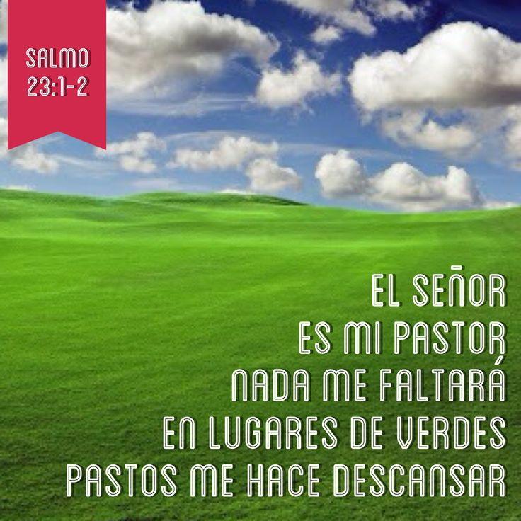 El Señor es mi pastor, nada me faltará, en lugares de verdes pastos me hace descansar (Salmos 23:1-2)