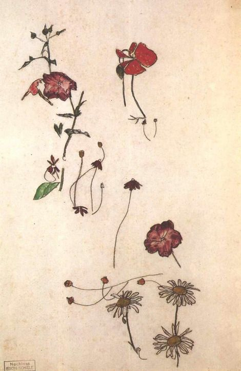Egon Schiele, flower studies