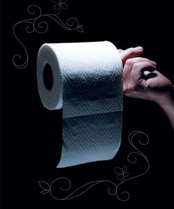 A Brief History of Toilet Paper:  http://www.mentalfloss.com/blogs/archives/40088