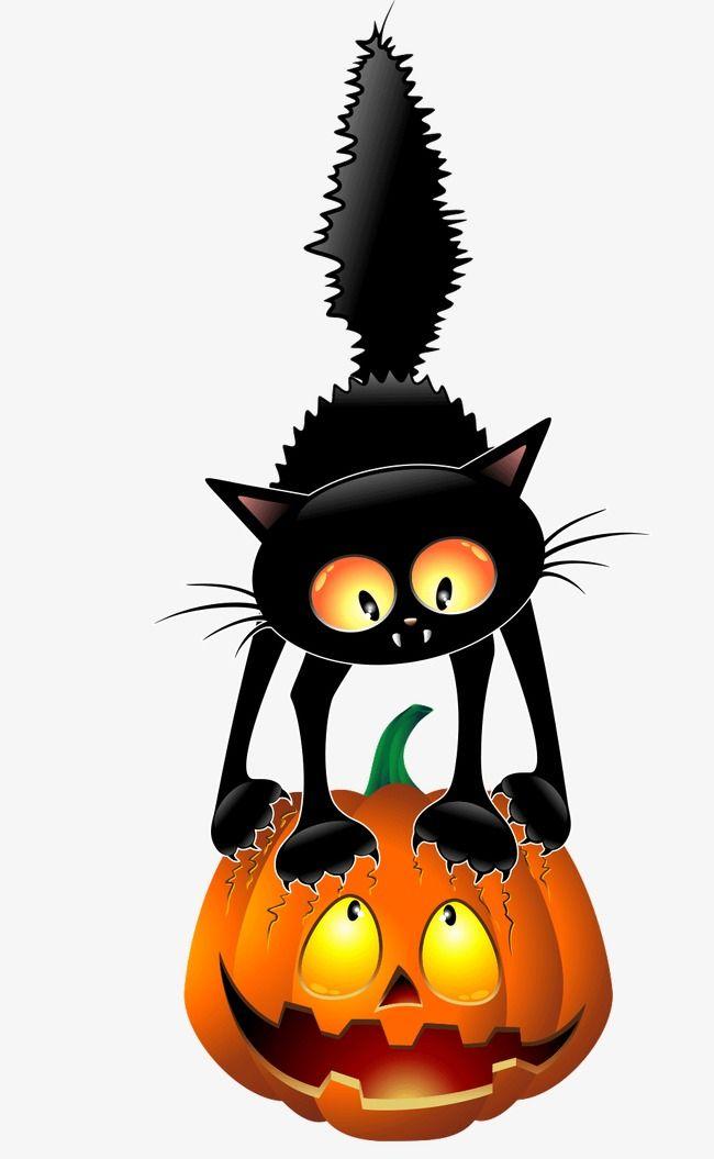 Black Cat Pumpkin Cat Clipart Black Cat Pumpkin Png Transparent Clipart Image And Psd File For Free Download Black Cat Halloween Halloween Pictures Halloween Cat