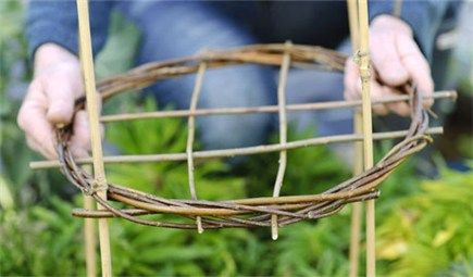 How to make a willow plant support.