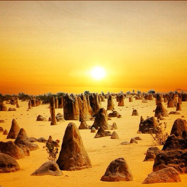 The Pinnacles Desert, Australia.  One of the most beautiful and impressive landscapes of Australia. Thousands of huge limestone pillars that rise from the desert's yellow sands.  Check - 2006