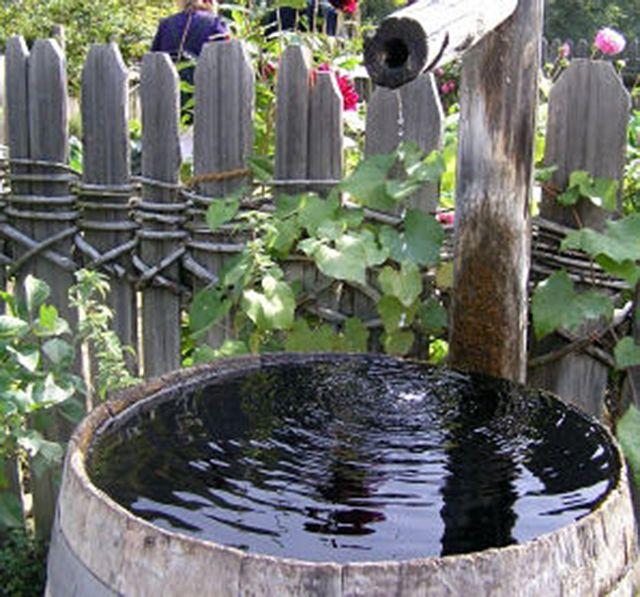 Mückenlarven im Regenfass vernichten Hausmittel wie Öl und Spüli (ökologisch abbaubar) reduzieren die Oberflächenspannung des Wassers: Die jungen Mücken können dann nichtmehr auf der Wasseroberfläche sitzen und ertrinke