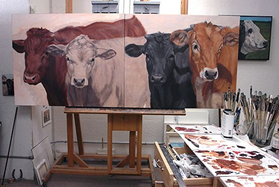 Cow studies to cow paintings in progress in my art studio. | A Fist Full of Brushes