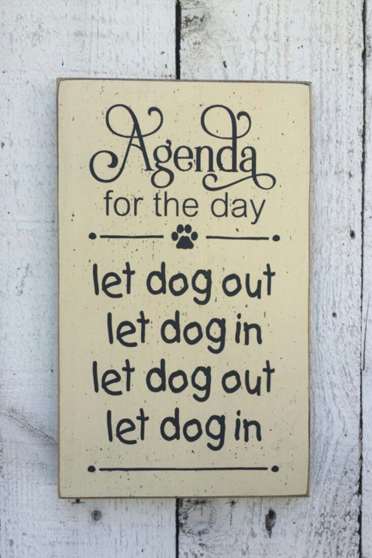 "Sign for dog owner, Let dog in Let dog out - small 7"" x 12"" wood sign, funny pet saying, dog lover, gift for dog owner, dog saying wood sign #ad #dogsayings"