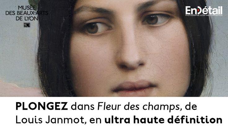 Fleur des Champs de Louis Janmot en ultra haute définition