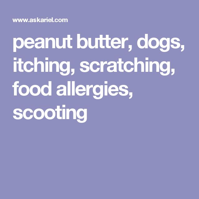 peanut butter, dogs, itching, scratching, food allergies, scooting