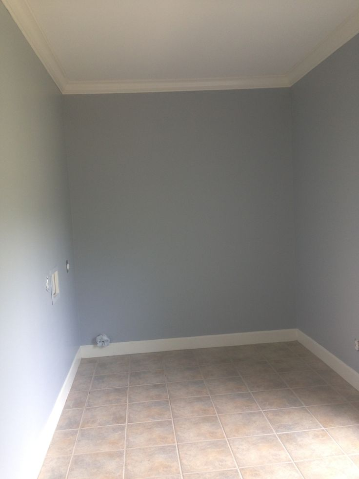 Benjamin Moore Thundercloud Grey Gray Bedroom Living