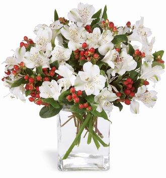 Snowy white alstroemeria and red hypericum berries are an elegant way to send your special greetings.  Arranged in a glass vase, this bouquet is certain to be a classic and welcome addition to the season's festivities.