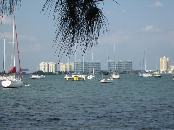 Sarasota Bay - Sarasota, FL