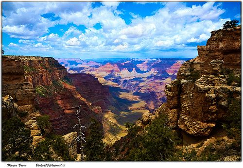 Ahhhh, looks so relaxing!: Families Travel, Buckets Lists, Favorite Places, Things To Do In Arizona, Families Vacations, Photo, Arizona Baby, Travel Buckets, Grand Canyon
