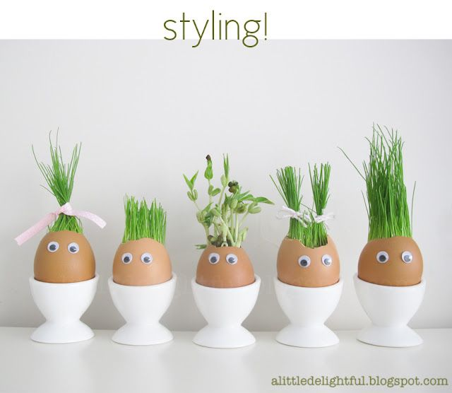 Grass Seed (or herb) Egg Plantings.  I love this!  So cute!! Fun decoration for the kitchen window.