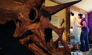 Visit or Membership to Morrison Natural History Museum (Up to 49% Off). Four Options Available.