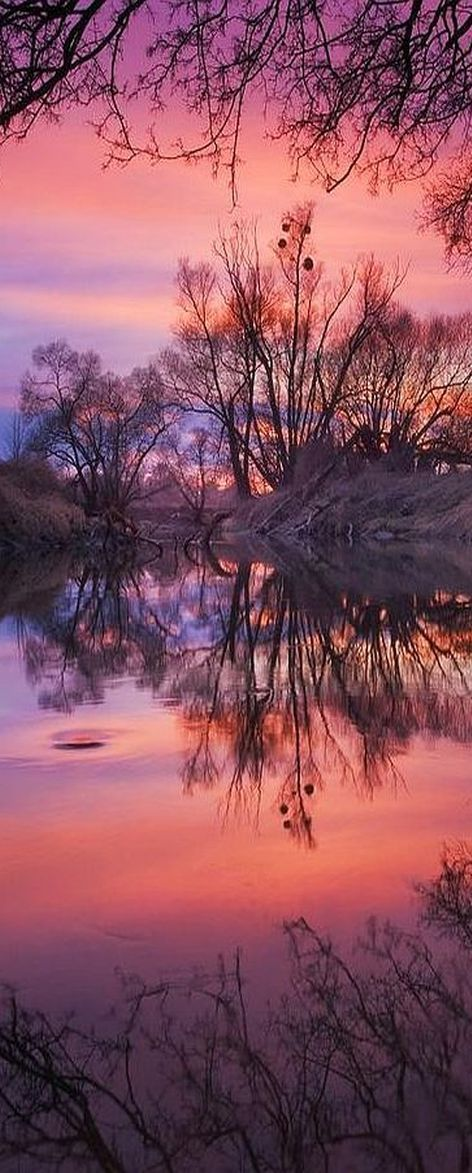 purple + pink SUNSET at River Odra, Czech Republic #by Jan Bainar   http://emmabeatrice22.tumblr.com