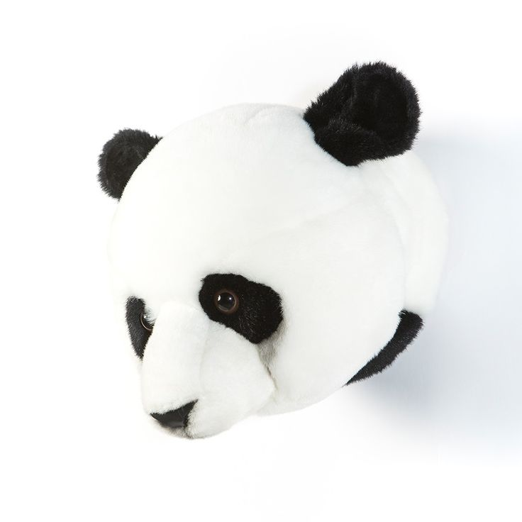 1000 ideas about animal head decor on pinterest faux for Panda bear decor
