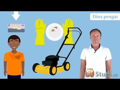StudiSverige - YouTube