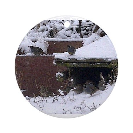 """Quail in the snow Round Ornament on CafePress.com Just sold this beautiful #winter #ornament to Stockton, UT, US! Once again it features my photo """"#Quail in the #Snow""""."""