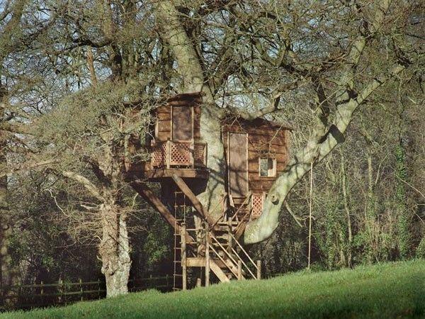 Компания Amazon Tree Houses создает удивительные уютные дома высоко над землей (15 фото - 1,74Mb) » Фото, рисунки