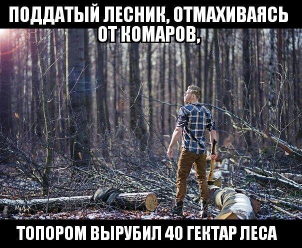 #юмор #шутки #приколы