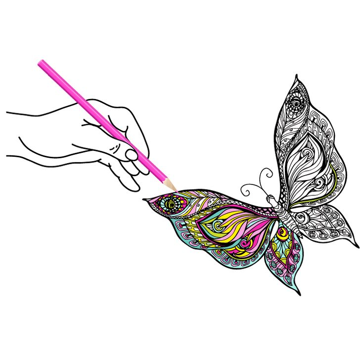 Butterfly Temporary Tattoo #801