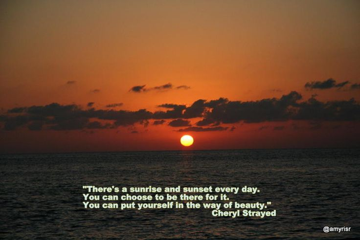 """Here is one of my favorite quotes from Wild: """"There's a sunrise and sunset every day. You can choose to be there for it. You can put yourself in the way of beauty."""" Cheryl Strayed"""