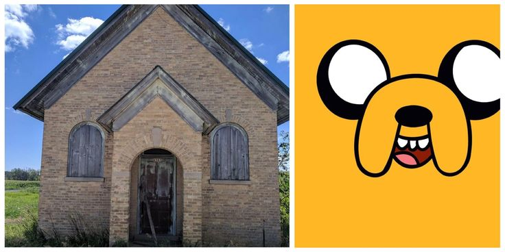 House Looks Like Jake from Adventure Time