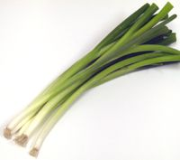 What are scallions?: Scallions - Green Onions