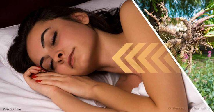 Los estudios demuestran que la raíz de valeriana ayuda a mejorar la sapidez a la que se duerme, la profundidad del sueño y la calidad del sueño. http://articulos.mercola.com/sitios/articulos/archivo/2017/05/04/raiz-de-valeriana-para-dormir.aspx?utm_source=espanl&utm_medium=email&utm_content=art1&utm_campaign=20170504&et_cid=DM142333&et_rid=1992901812