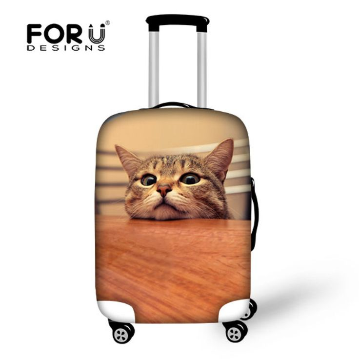 83 best Cat Luggage images on Pinterest | Crazy cat lady, Crazy ...