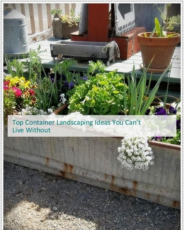 Container Landscaping Back Yard Ideas, Container Garden Ideas