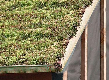 les 8 meilleures images du tableau toiture v g tale sur pinterest vegetal toits verts et toiture. Black Bedroom Furniture Sets. Home Design Ideas
