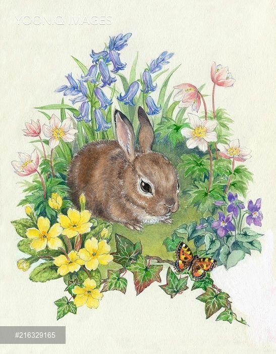 PortForLio - Baby Rabbit with bluebells, wood anemones etc