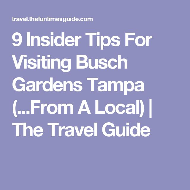 9 Insider Tips For Visiting Busch Gardens Tampa (...From A Local) | The Travel Guide