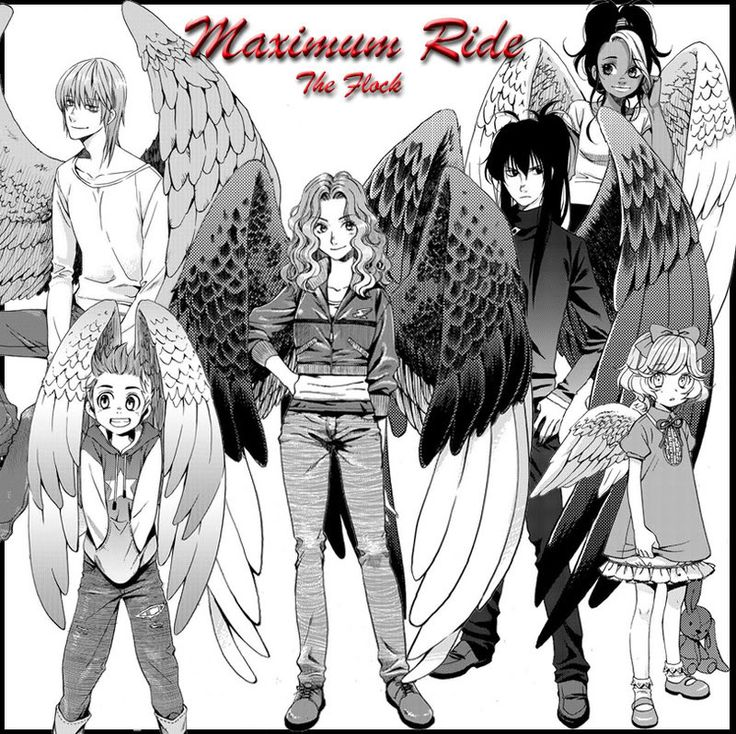 maximum ride mangaanime pinterest the ojays