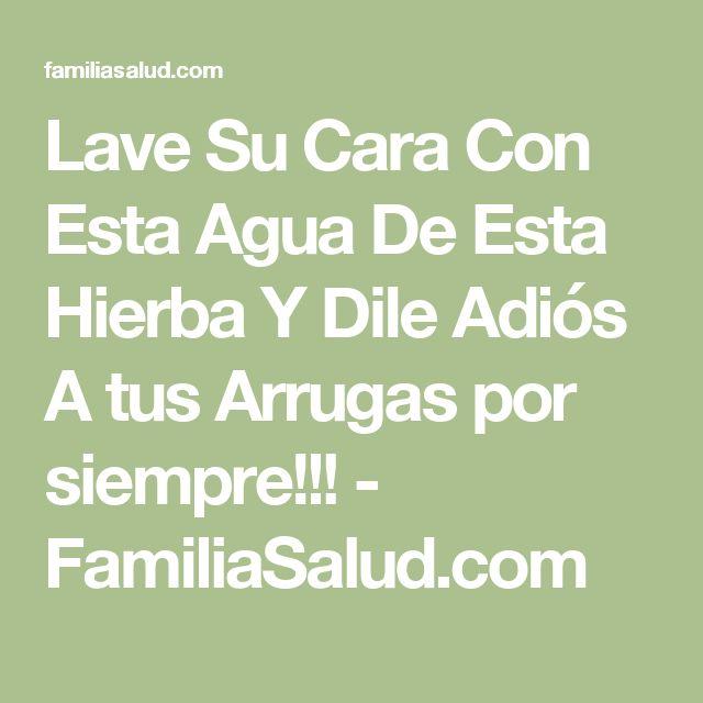 Lave Su Cara Con Esta Agua De Esta Hierba Y Dile Adiós A tus Arrugas por siempre!!! - FamiliaSalud.com