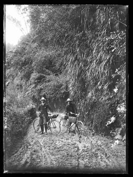 Pipiriki - Raetihi Road - Collections Online - Museum of New Zealand Te Papa Tongarewa