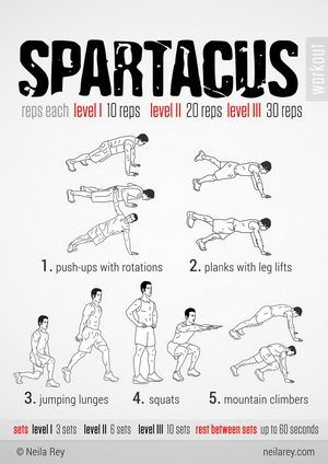 Spartacus Workout - Neila Ray themed workouts are great for at home!!