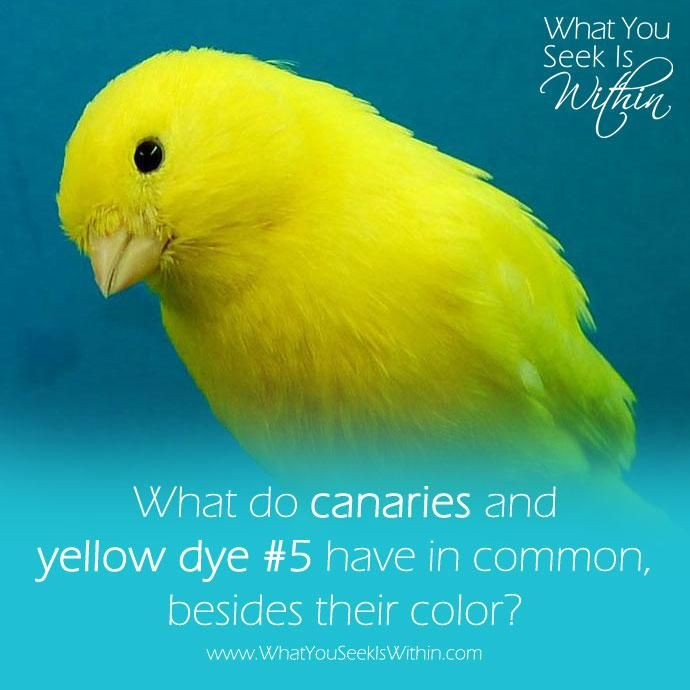 What do canaries and yellow dye #5 have in common, besides their color? Have you ever heard of MTHFR or do you know someone who has a genetic mutation wreaking havoc in their lives? It could be showing up as random food allergies or causing ADHD-like symptoms. This is my story, and how MTHFR has impacted my life and the lives of my children. 💙 #wysiw #mthfr #mthfrgenemutation #mthfrawareness #mthfrsupport #mthfrc677t #mthfrmama #mthfrliving #adhd #adhdmom #adhdparenting #adhdawareness